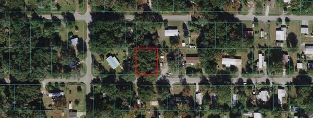 TBD SE 130TH Lane, Ocklawaha, FL 32179 (MLS #OM624099) :: Better Homes & Gardens Real Estate Thomas Group