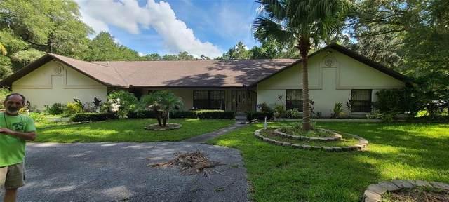 6677 W Highway 326, Ocala, FL 34482 (MLS #OM624110) :: Better Homes & Gardens Real Estate Thomas Group