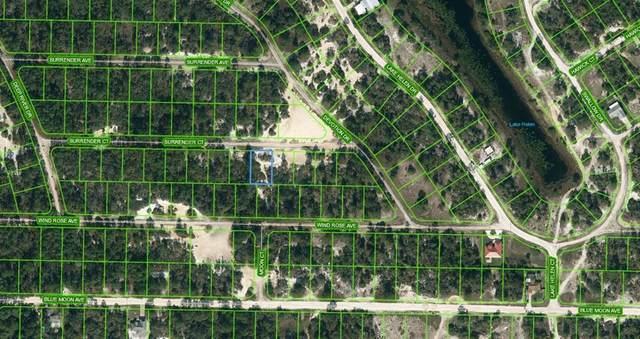 429 Surrender Court, Lake Placid, FL 33852 (MLS #OM624137) :: Bridge Realty Group