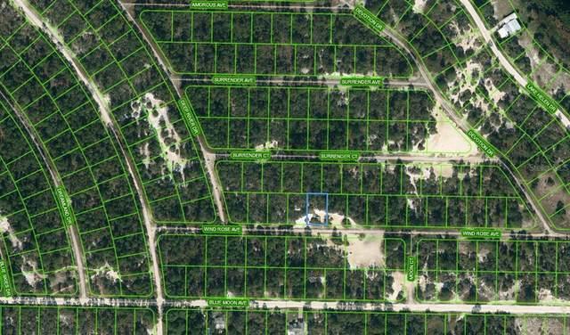 418 Wind Rose Avenue, Lake Placid, FL 33852 (MLS #OM624138) :: Zarghami Group