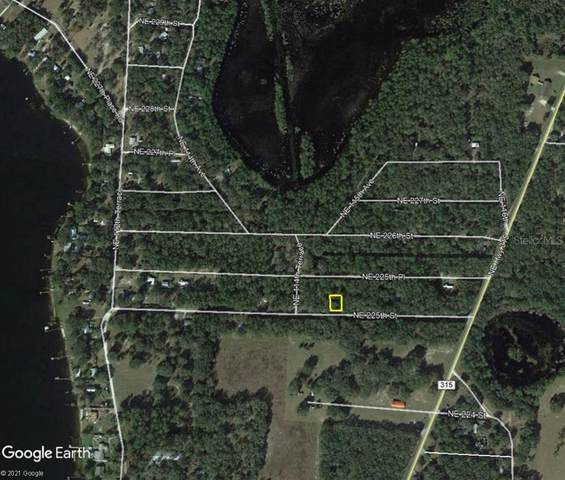 11545 NE 225TH Street, Fort Mc Coy, FL 32134 (MLS #OM624153) :: The Light Team