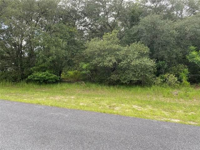 8264 N Triana Drive, Citrus Springs, FL 34434 (MLS #OM624171) :: Prestige Home Realty