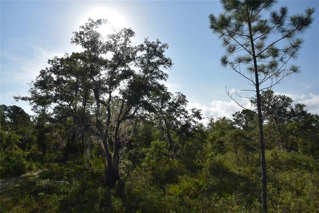 Off Hwy 234, Gainesville, FL 32641 (MLS #OM624188) :: Premium Properties Real Estate Services