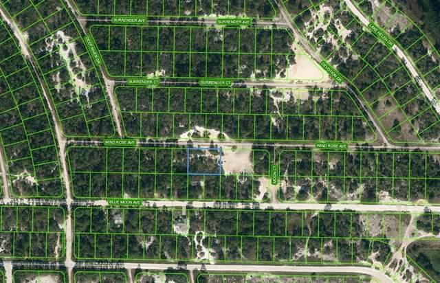 417 Wind Rose Avenue, Lake Placid, FL 33852 (MLS #OM624190) :: Zarghami Group