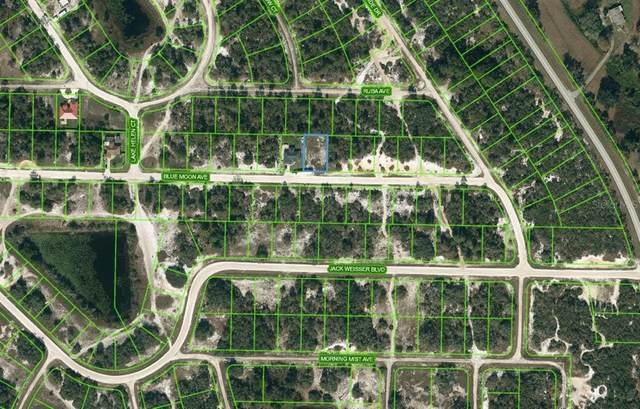 464 Blue Moon Avenue, Lake Placid, FL 33852 (MLS #OM624194) :: Zarghami Group