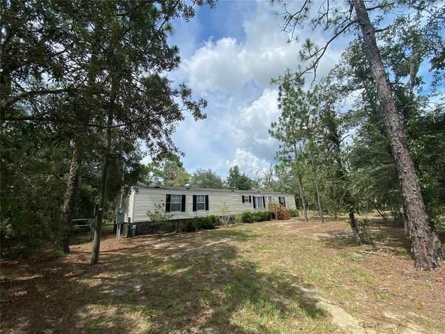 14891 NE 14TH Lane, Williston, FL 32696 (MLS #OM624198) :: Griffin Group