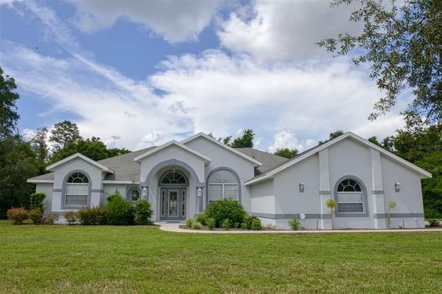 3651 E Theresa Lane, Inverness, FL 34452 (MLS #OM624212) :: Everlane Realty