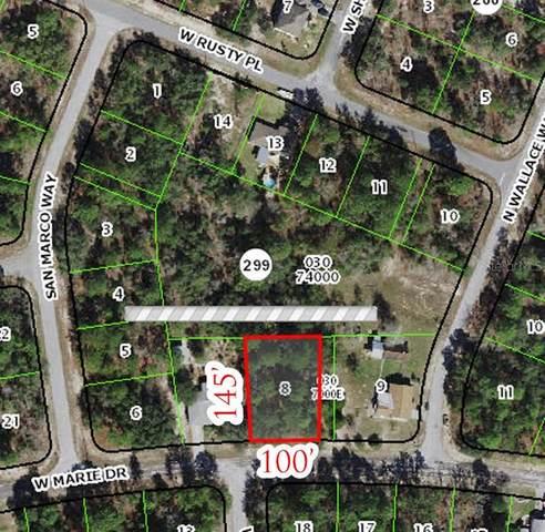 3173 W Marie Drive, Citrus Springs, FL 34433 (MLS #OM624247) :: Prestige Home Realty