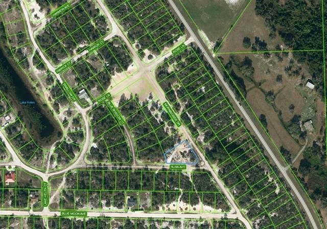 721 Morningside Drive, Lake Placid, FL 33852 (MLS #OM624253) :: Zarghami Group