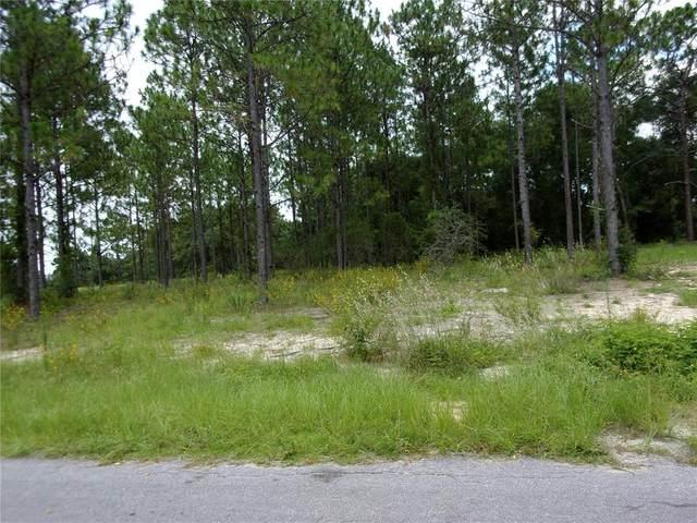 0000 Malauka Loop, Ocklawaha, FL 32179 (MLS #OM624267) :: Premium Properties Real Estate Services