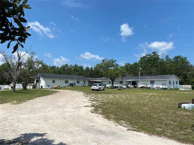 12850 NE Hwy 27 Alt, Williston, FL 32696 (MLS #OM624272) :: Griffin Group