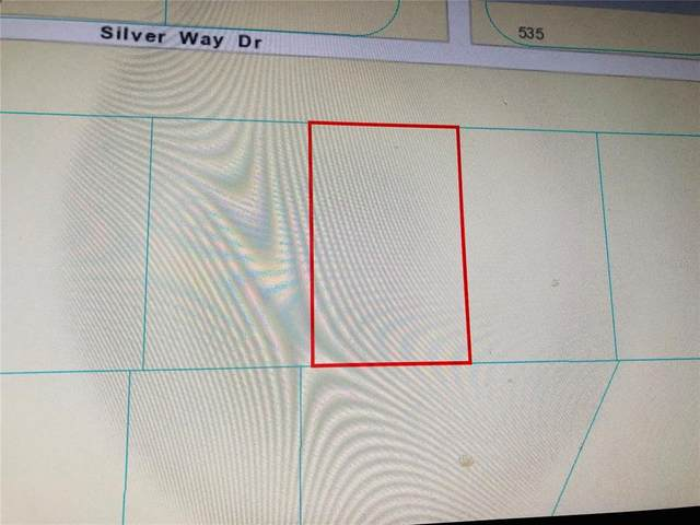 0 Silver Way Drive, Ocala, FL 34472 (MLS #OM624280) :: Premium Properties Real Estate Services