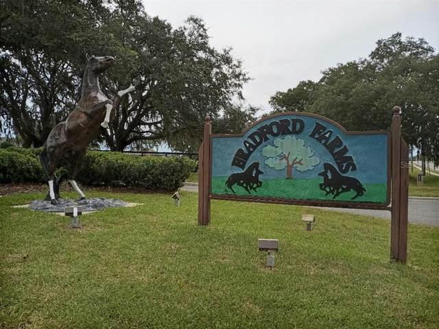 0 SW 93RD Lane, Ocala, FL 34476 (MLS #OM624313) :: Better Homes & Gardens Real Estate Thomas Group