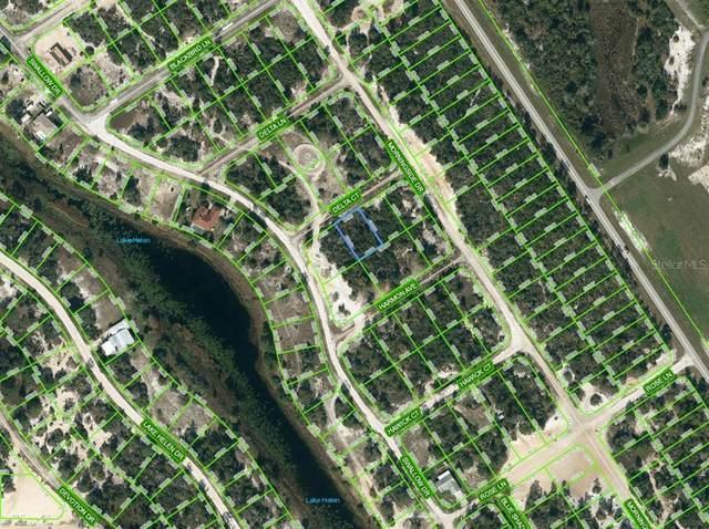 455 Delta Court, Lake Placid, FL 33852 (MLS #OM624317) :: Zarghami Group