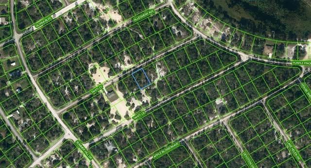 415 Tahiti Court, Lake Placid, FL 33852 (MLS #OM624331) :: Better Homes & Gardens Real Estate Thomas Group