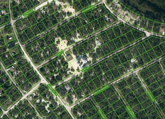 410 Tahiti Lane, Lake Placid, FL 33852 (MLS #OM624332) :: Better Homes & Gardens Real Estate Thomas Group