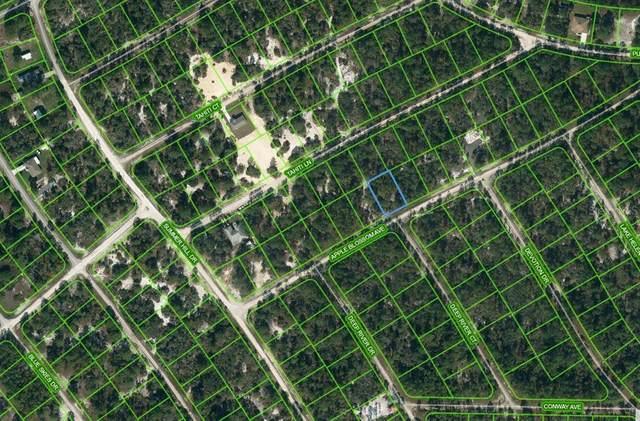 414 Apple Blossom Court, Lake Placid, FL 33852 (MLS #OM624333) :: Better Homes & Gardens Real Estate Thomas Group