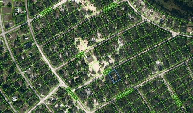 411 Tahiti Lane, Lake Placid, FL 33852 (MLS #OM624334) :: Better Homes & Gardens Real Estate Thomas Group