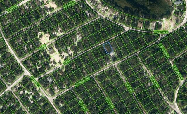 423 Tahiti Lane, Lake Placid, FL 33852 (MLS #OM624335) :: EXIT Realty Positive Edge