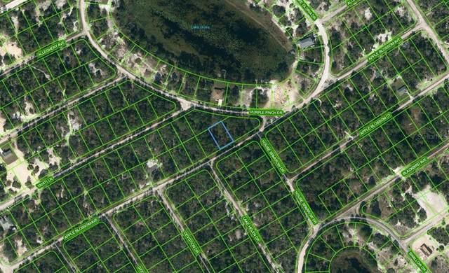 Lake Placid, FL 33852 :: Sarasota Gulf Coast Realtors