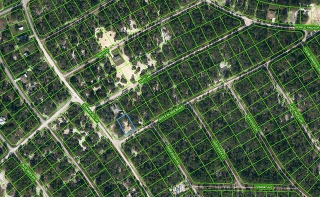 402 Apple Blossom Court, Lake Placid, FL 33852 (MLS #OM624338) :: EXIT Realty Positive Edge