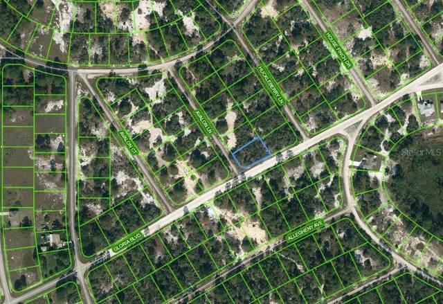 601 Avalon Lane, Lake Placid, FL 33852 (MLS #OM624342) :: EXIT Realty Positive Edge