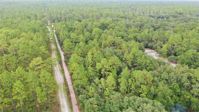 00 SW 90 Avenue, Dunnellon, FL 34432 (MLS #OM624345) :: Rabell Realty Group