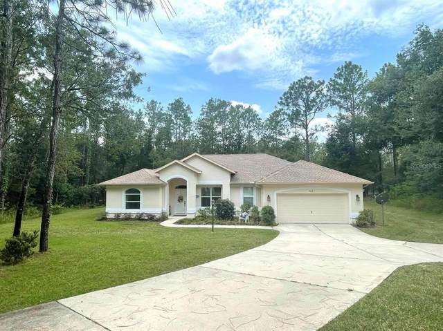 9005 SW 204TH Circle, Dunnellon, FL 34431 (MLS #OM624346) :: Better Homes & Gardens Real Estate Thomas Group