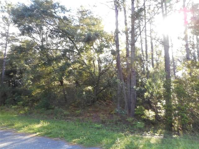 8501 N Trojan Drive, Citrus Springs, FL 34434 (MLS #OM624386) :: Prestige Home Realty