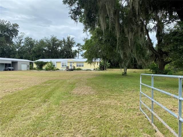 18601 NE 5 TERR Road, Citra, FL 32113 (MLS #OM624400) :: Vacasa Real Estate