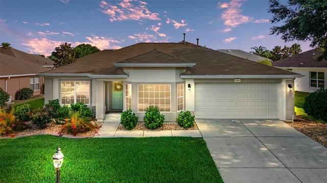 13591 SE 87TH Circle, Summerfield, FL 34491 (MLS #OM624415) :: Dalton Wade Real Estate Group