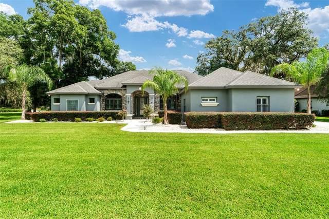 2911 SE 29TH Street, Ocala, FL 34471 (MLS #OM624417) :: Cartwright Realty