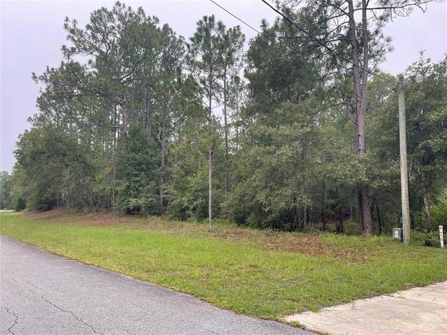 SW 215TH COURT Road, Dunnellon, FL 34431 (MLS #OM624419) :: EXIT Realty Positive Edge