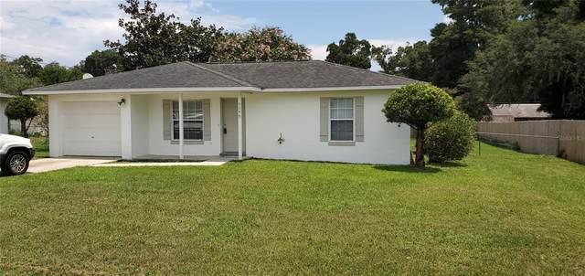 5399 NE 11TH Avenue, Ocala, FL 34479 (MLS #OM624483) :: Zarghami Group