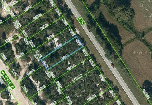 1029 County Road 29, Lake Placid, FL 33852 (MLS #OM624488) :: CENTURY 21 OneBlue