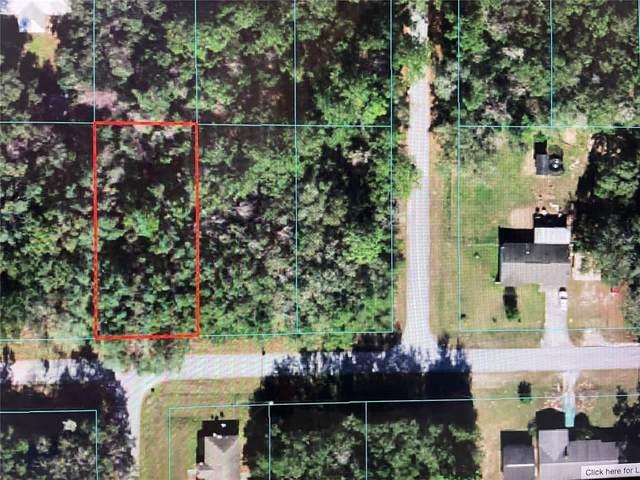 TBD SW Flamingo Drive, Dunnellon, FL 34431 (MLS #OM624497) :: Expert Advisors Group