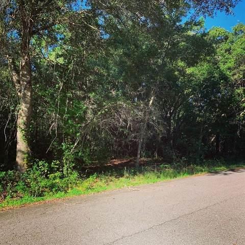 TBD Bay Pass, Ocklawaha, FL 32179 (MLS #OM624498) :: Alpha Equity Team