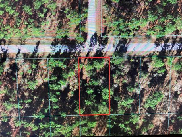 TBD NW Hillsdale Avenue, Dunnellon, FL 34431 (MLS #OM624505) :: Sarasota Property Group at NextHome Excellence