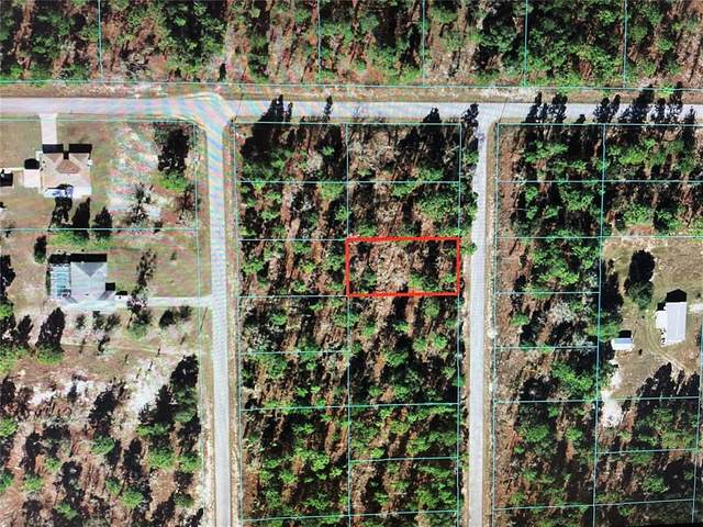 TBD SW Hilliard Avenue, Dunnellon, FL 34431 (MLS #OM624510) :: Kreidel Realty Group, LLC