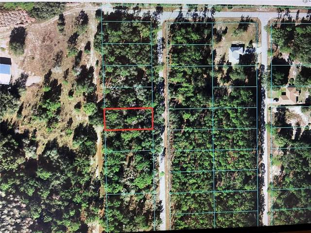 TBD SW South Water Court, Dunnellon, FL 34431 (MLS #OM624512) :: The Robertson Real Estate Group