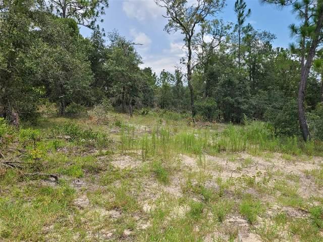 0 SW Nectarine Lane, Dunnellon, FL 34431 (MLS #OM624520) :: Sarasota Property Group at NextHome Excellence