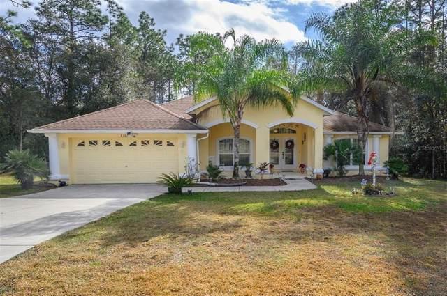 8180 N Hillview Circle, Citrus Springs, FL 34434 (MLS #OM624532) :: RE/MAX LEGACY