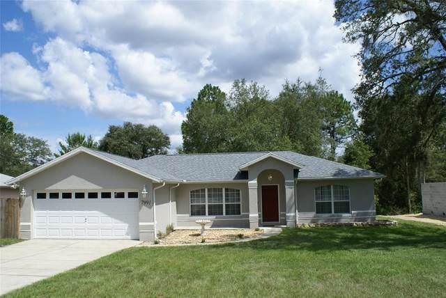 7991 N Fieldstone Drive, Citrus Springs, FL 34433 (MLS #OM624544) :: RE/MAX LEGACY