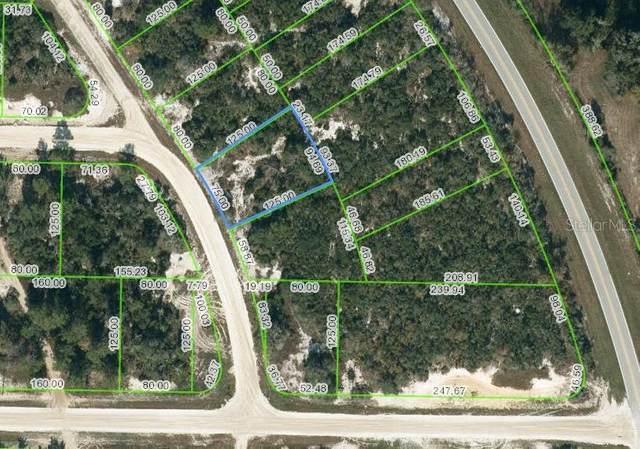 752 Morningside Drive, Lake Placid, FL 33852 (MLS #OM624592) :: RE/MAX Elite Realty
