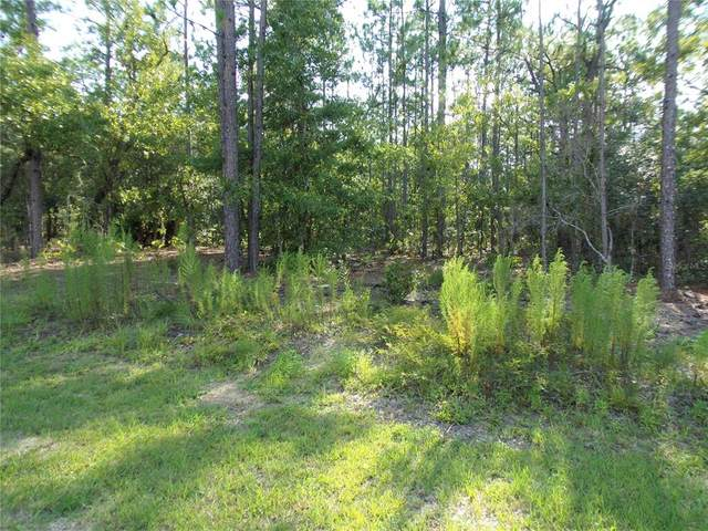 L6 N 1/2 SW 136TH COURT Road, Dunnellon, FL 34432 (MLS #OM624594) :: Globalwide Realty