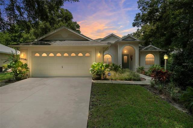 19381 SW 101ST PLACE Road, Dunnellon, FL 34432 (MLS #OM624596) :: Dalton Wade Real Estate Group