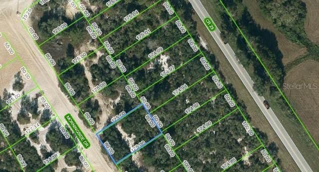 712 Morningside Drive, Lake Placid, FL 33852 (MLS #OM624597) :: RE/MAX Elite Realty