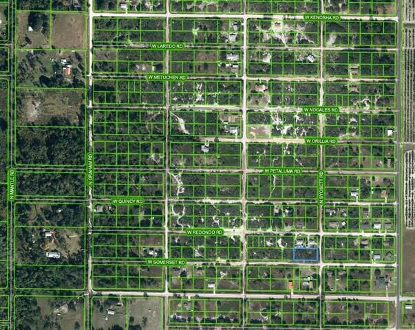 2810 W Somerset Road, Avon Park, FL 33825 (MLS #OM624612) :: Everlane Realty
