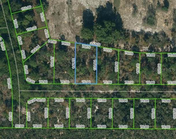 136 Claverland Drive, Lake Placid, FL 33852 (MLS #OM624630) :: Everlane Realty