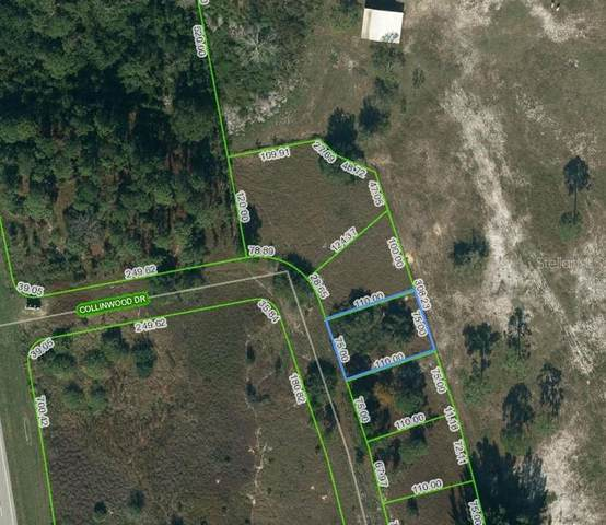 132 Collinwood Drive, Lake Placid, FL 33852 (MLS #OM624631) :: Everlane Realty